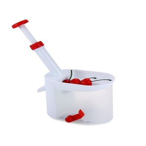Pitter Stone Remover Machine Cherry Corer With Container Kitchen Tool
