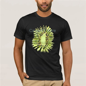 Mode Cool Style Halloween Kiwis Graines Fruit Costume amant Kiwi cadeau Printed Casual Sport Sweat à capuche à capuche T-shirt