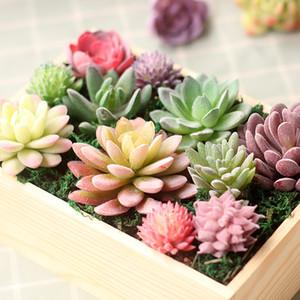 Verde Violeta Rojo Blanco Azul Flocado artificial Suculentas Plantas Las plantas Inicio decoración de jardín de plástico mini escritorio Bonsai