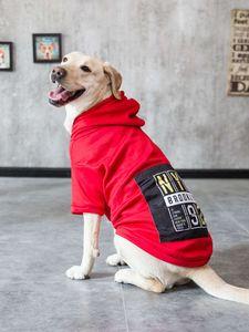 Chao Marka Büyük Pet Bez Altın Kürk Husky Samoye Labrador Büyük Köpek Sonbahar Kış Giyim