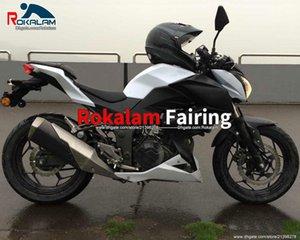 Z 300 Motorcycle para Kawasaki 2016 Z250 2015 Failings Aftermarket 15 16 Z 250 Z300 carenado (moldeo por inyección)