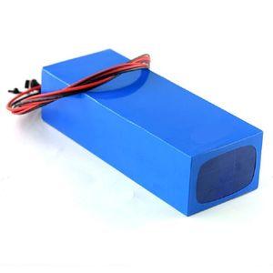 Personalizzato 12V 24V 36V 48 V 60 V 72V 10AH 15Ah 20ah 30Ah 40ah Ion Pack Battery per ioni di litio per il veicolo di strumenti elettrici E-Bike