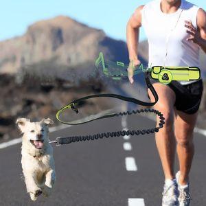 Dog Pet Leash Hands Free Cat Running Jogging Padded Waist Bag Belt Reflective Strip Elastic Leash Perfect Walking Training Dog Leash Set
