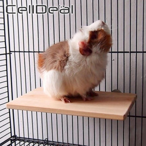 Wood Stand Platform Pet Bird Toys Parrot Rack Hamster Perches Paw Grinding Clean Cage Accessories for Gerbils Mice Wood Toys Q1224