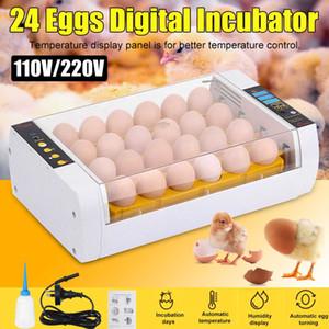 حاضنة البيض الكامل الحاضنة التلقائي 24 قطع بطة الطيور البيض الحاضنة الدواجن الصغيرة مربع تربية الدجاج الرقمي