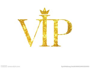 VIP Drop Shipping Customize Почтовые VIP Ссылка для мужчин куртки