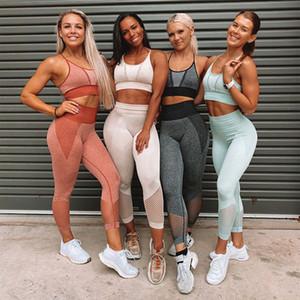 Women Seamless Shark Yoga Wear Set Sportive Bra Crop Top Biker Short Workout Sets Gym Waist Leggings Moisture Wicking Bra and Pants