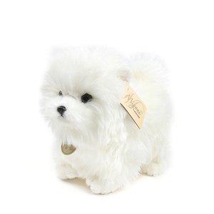 Aurora Pom Dog Breed con morbido peluche Pomeranian Bichon Bichon Bibe Bibero Puppy Puppy Divertente Bambola Bambino Bambino Bambino Adulto Compleanno Regalo di Natale Y1209