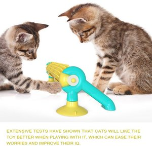 Pet Cat Wall Sucker Track Cat educational toy track ball Ball Toy Selfs
