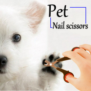 Pet Nail Claw Grooming Scissors Clippers For Dog Cat Bird Toys Gerbil Rabbit Ferret Small Animals Newest Pet Grooming Supplies