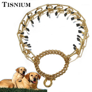 Tisnium Gold Color Pinch Collar Pet Dog Safety Training Rope High Quality Stainless Steel Dog Leash Chain Small Medium Large1