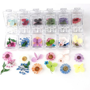 일본어 말린 꽃 12 꽃잎 진짜 꽃 영원한 꽃의 사진 치료 크리스탈 상자 UV 수지 에폭시 곰팡이 드 Jllwnd