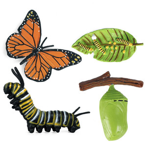 Kids Cognitive Educational Toys Simulation Animal Insect Model Mini Animal Butterfly Growth Cycle Ornaments