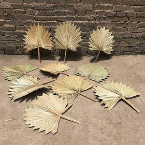 Natural Plants Dried Flower Fan Leaf Wedding Decoration Sunflower Fan Leaves DIY Home Swing Vase Flower Arrangement1