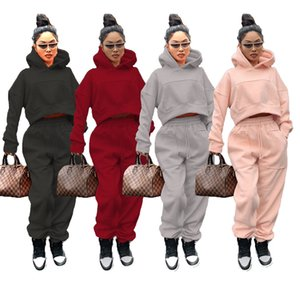 Spring Fleece Womens Tracksuits Hooded Sweatshirt Long Pants 2PCS Sets for Women Casual Ladies Two Pieces Outfits