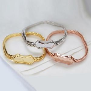 Europe America Style Lady Femme Gold / Silver-Color Matériel gravé V Initials Quatre Feuille Flower Nanogram Snake Chain Chain Chaîne M68993