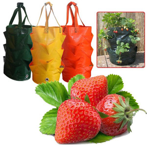Strawberry Planting Growing Bag 3 Gallons Multi-mouth Container Bag Grow Planter Pouch Root Bonsai Plant Pot Garden Supplies W2