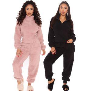 Autunno inverno caldo set due pezzi per le donne 2020New spessa Felpa con la chiusura lampo coulisse Harem Outfit Homewear