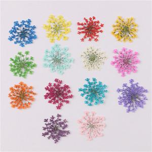Nouveaux 30pcs / Set pressé Majus Sèche Fleur Plantes sèches pour la résine époxy Pendentif Collier Bijoux Fabrication Craft DIY Accessoires DHE4475