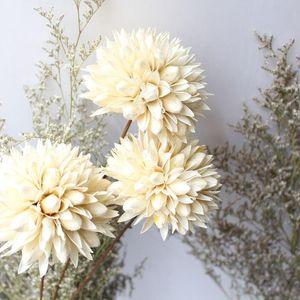 DIY Projects Home Wedding Decor Flower Arrangement Material Natural Dried Flower Dried Fruit Hand-made Artificial Branch
