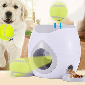 Dog cat interactive ball toy dog tennis player substitute game dog IQ training machine
