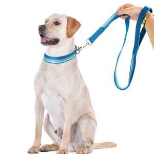 Nylon-Hundekragen und Leine einstellbar einstellbar reflektierender Streifenhund-Halsbänder und Pet Walking-Lead-Leine für kleine mittlere Hunde Wmtnet