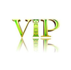 Vip Link Payment For Our Customers Designate Products Order jllloI