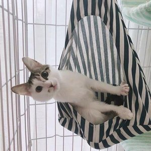 Pet Cat Dog Bed Nest Hammock Bed Warming Thicken Soft Pet Cat House Comfortable Cage Deep Sleeping Conical Sleeping Basket