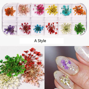 NA054 12 colores de flores secas Nail Art Decoraciones 3d Natural margarita Gypsophila en conserva seco floral DIY Pegatinas manicura Decor Decal