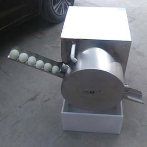 2021New Type de nettoyage d'œufs / machine à laver à vendre / à la petite machine à laver pour œufs de canard 220V