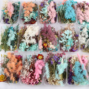 1 Box Real Dried Flower Dry Plants For Aromatherapy Candle Pendant Necklace Jewelry Making Craft DIY Valentines Day Gifts w-00617
