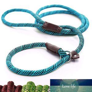 Durable Dog Slip Seil Leine Einstellbare Schleife Kragen Komfortable Leine unterstützt das stärkste Ziehen mit großen mittelgroßen Hunden
