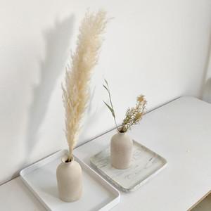 5pcs décor herbe mariage pampas spéciales de grande taille Fluffy fleurs de mariage plume plantes fleurs séchées blanc naturel 55cm
