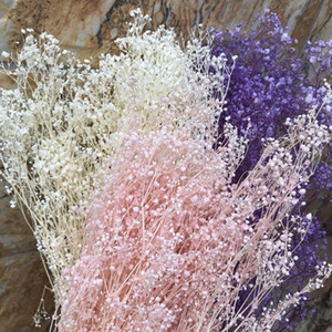 60g Real Natural Fresh Forever Babysbreath Dried Preserved Baby breath FlowersDIY Dry Gypsophile Flower Bouquet For Home Decor