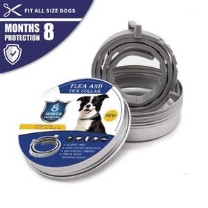Collari per animali domestici 2020 rimuove pulci e tick Collar Collar Cani Cats fino a 8 mesi Flea Tick Collar Anti-Mosquito e Insetto Repellente @ 221