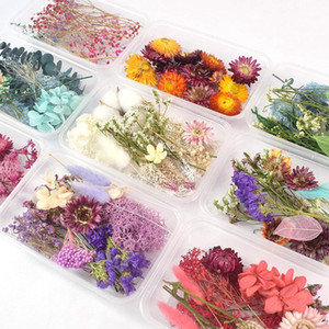 1 Box Real Dried Flower Dry Plants For fall decorations Epoxy Resin Pendant Necklace Jewelry Making Craft decor DIY Accessories1