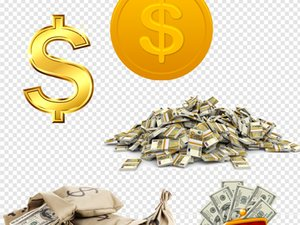 Il collegamento veloce da pagare per la tassa di spedizione DHL extra DHL Invia ordine Notify Notifica dell'ordine può Hlep effettua il pagamento