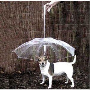 Cool Animal de estimação Suprimentos Úteis Transparentes PE PET Guarda-chuva Pequena Guarda-chuva Guarda-chuva Gear com cachorro Leads mantém o animal de estimação seco confortável na chuva