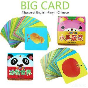 Bambini Educazione precoce Apprendimento frutta Verdura Verdure Libro di Animale con Pinyin cinesi Immagini Italiano Immagini regalo per bambini LJ201118