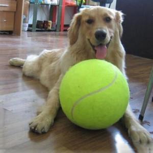 24CM собака надувной теннис на открытом воздухе творческой игры интерактивные игрушки высокого качества поставок резины укуса домашних животных