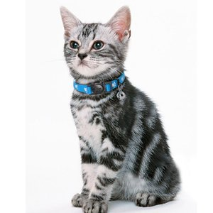 4 unids / lote Lanzamiento rápido Cuello de gato Nylon Safety Breakway Cat Gitten Collars con campana para mascotas pequeñas Perros Cats Mixed Jllayn