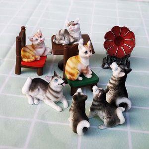 Modelo Animal Figurine Início Vidro Decor Cat Dog Husky Ornament Bonsai Miniature Craft fada do jardim Decoração DIY Acessórios
