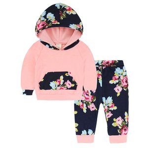 Newborn Infant Baby Girls Floral Hoodie Tops+Pants 2PC Outfit Clothes Set Gray Autumn Winter Baby Clothing Sets