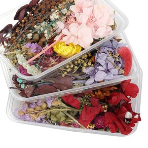 1box Estilo de mezcla aleatoria Decoración de flores secas Decoración Floral Natural Pegatina Belleza Nail Art Decalas Epoxy Molde DIY Relleno Joyería H JLLNDF