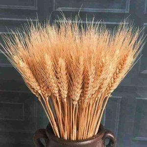 25 PCS secos tallos de trigo natural ramo de las flores de la planta de la decoración de Navidad oficina en casa decoración de la boda Flores