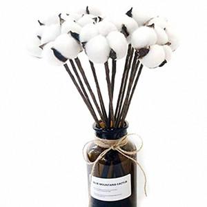 10 Cotton artificiale pacchetto Boll filo di ferro staminali fai da te fiori Puntelli casa Matrimonio hotel decorazione del partito Circa 13 pollici ad alta Mund #