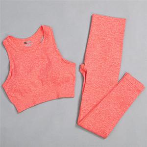 6 Katı Renkler Yoga Set Kadın Giyim Fitness Kolsuz Kırpma Üst Yüksek Bel Spor Tayt Koşu Yoga Pantolon Spor Seksi Yelek C0121