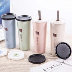 1PC Portable Hand Cup Wheat Straw Water Cup with Straws Double Lid Cola Coffee Plastic Travel Drinking Home Office Gifts