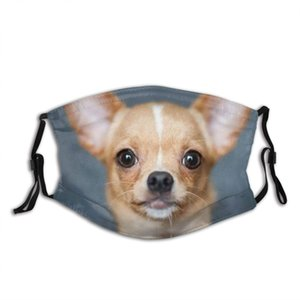 Chihuahua Dog Face Mask Dust Mask Outdoor Reusable Mask For Man Woman