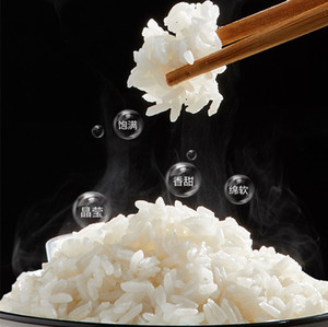FreeShipping و220V 1.2L الكهربائية طاهية أرز أوتوماتيكي متعدد طباخ 300W البسيطة المحمولة الطبخ وعاء EU / AU / UK / الولايات المتحدة التوصيل